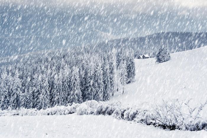 Carta da parati inverno in montagna pixers viviamo for Carta da parati per casa in montagna