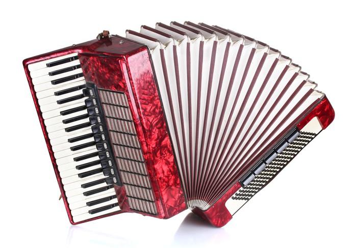 Znalezione obrazy dla zapytania akordeon