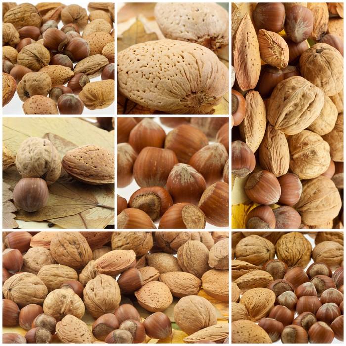 Vinylová Tapeta Fruits secs - Ovoce
