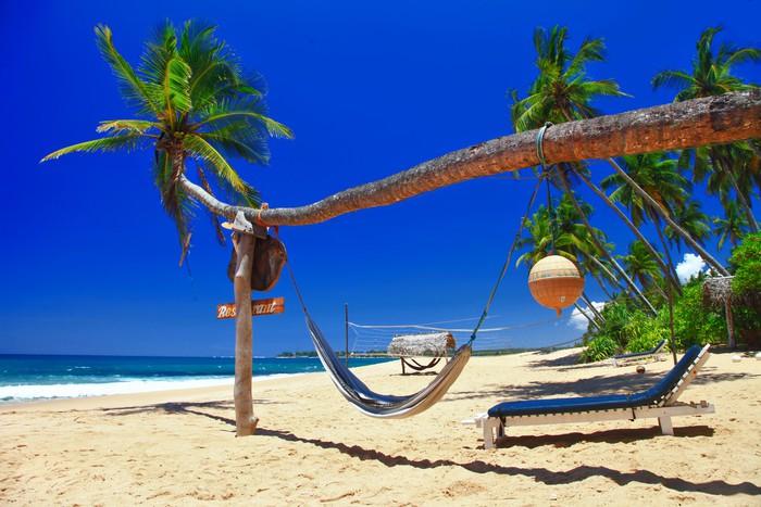 Vinylová fototapeta Tropical relax - Vinylová fototapeta