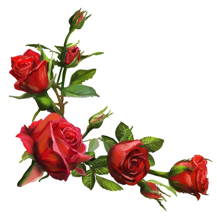 Vinylová Tapeta Dekorace z červených růží květy - Květiny