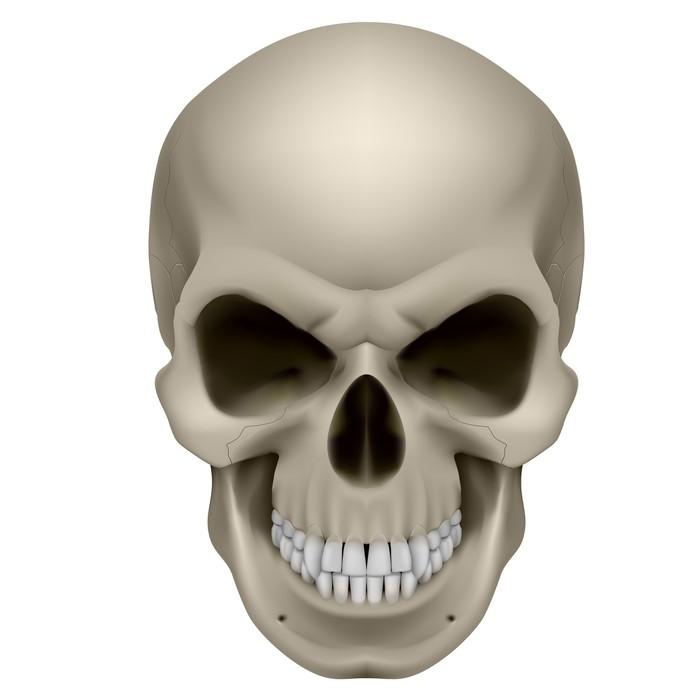 Vinilo Pixerstick Cráneo humano • Pixers® - Vivimos para cambiar