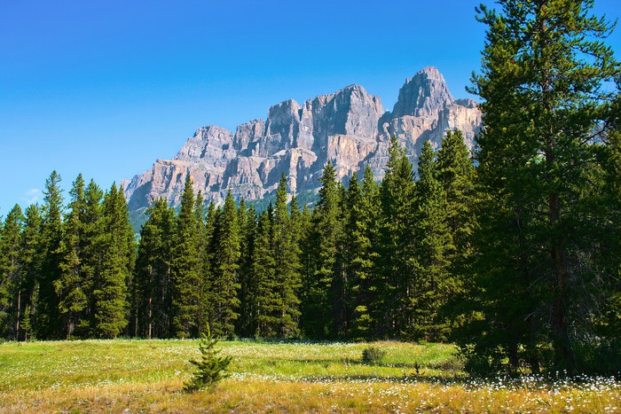 Vinylová Tapeta Příroda v národním parku Jasper, Alberta, Kanada - Amerika
