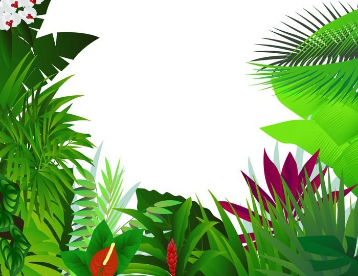 Vinylová Tapeta Příroda lesa v pozadí - Stromy a listí