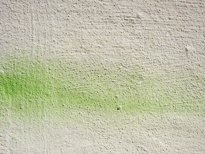 Vinylová Tapeta Wand pozadí mit grün 1 - Prázdniny