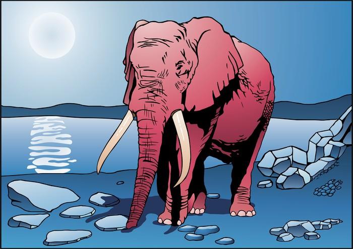 Vinylová Tapeta Pink Elephant - Savci