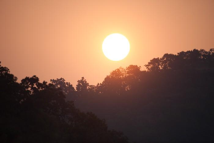 Vinylová Tapeta Východ slunce v indické džungli - Asie