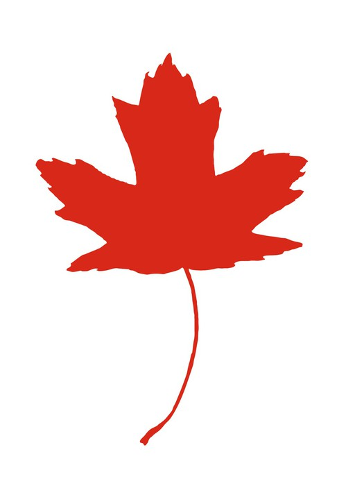 Maple Leaf Canadian Symbol Wall Mural Pixers We Live To Change