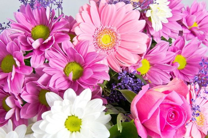 Carta da parati mazzo di fiori primaverili pixers for Carta parati fiori