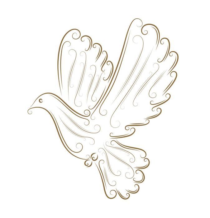 Szkic gołębia