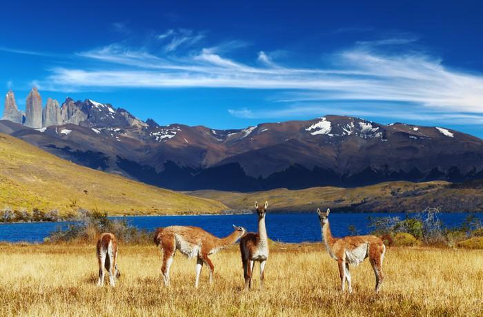 Vinylová Tapeta Torres del Paine, Patagonia, Chile - Témata