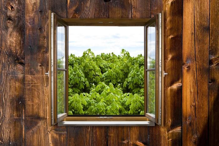 fototapete h ttenfenster pixers wir leben um zu ver ndern. Black Bedroom Furniture Sets. Home Design Ideas
