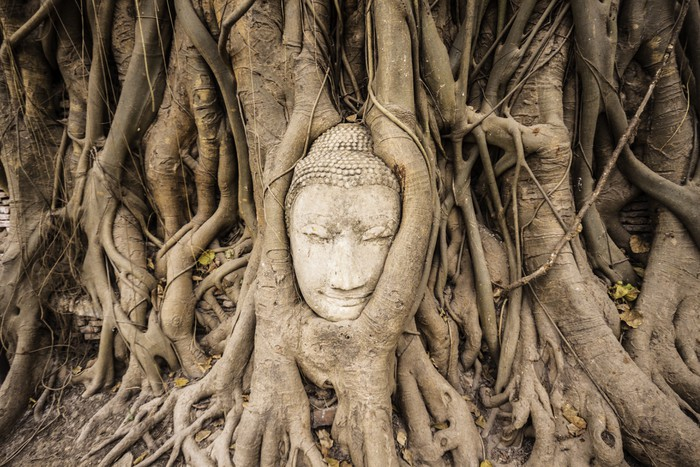 Vinylová Tapeta Pískovec Buddha - Asie