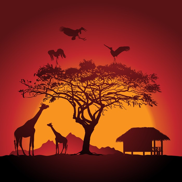 African sunset wall mural pixers we live to change for African sunset wall mural