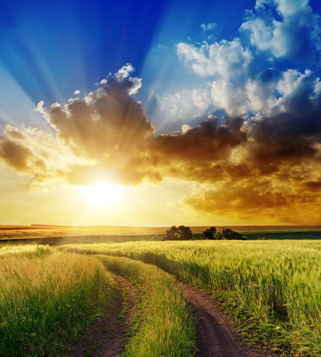Nálepka Pixerstick Dobrý západ slunce nad venkovské silnici - Nebe