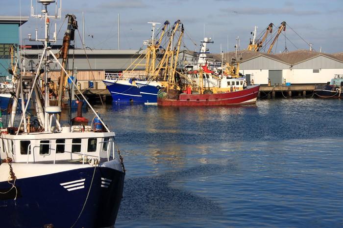 Vinylová Tapeta Traulery v přístavu Brixham - Lodě