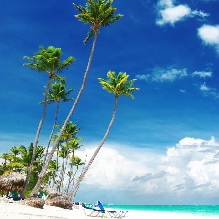 Vinylová Tapeta Caribbean beach - Prázdniny