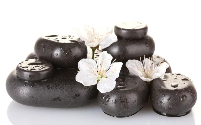 Vinylová fototapeta Černé lázně kameny s květinami a okvětními lístky izolované - Vinylová fototapeta