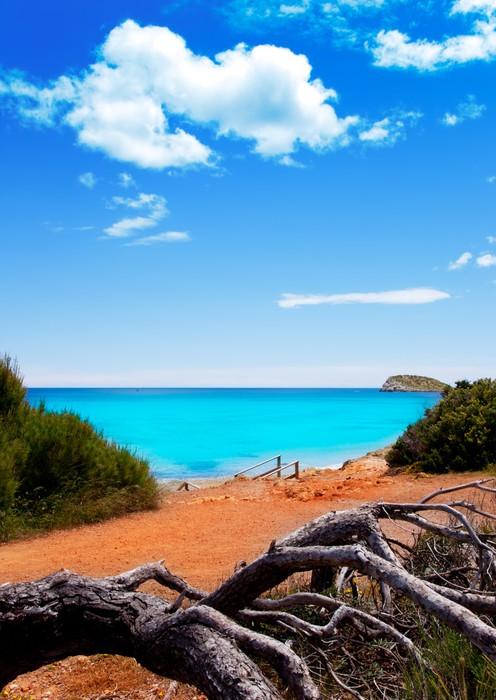 Vinylová Tapeta Cala Nova pláž v Ibiza ostrov s tyrkysovou vodou - Prázdniny