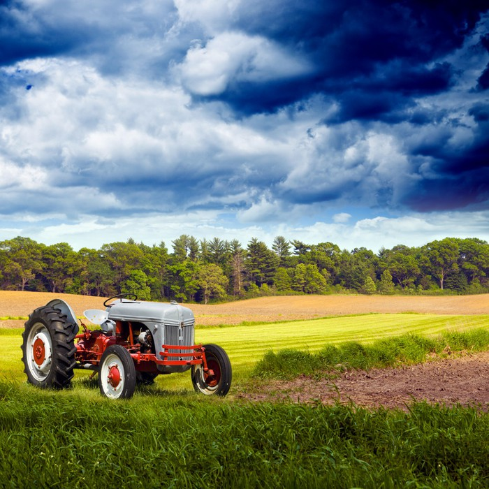 American countryside wall mural pixers we live to change for Countryside wallpaper for walls