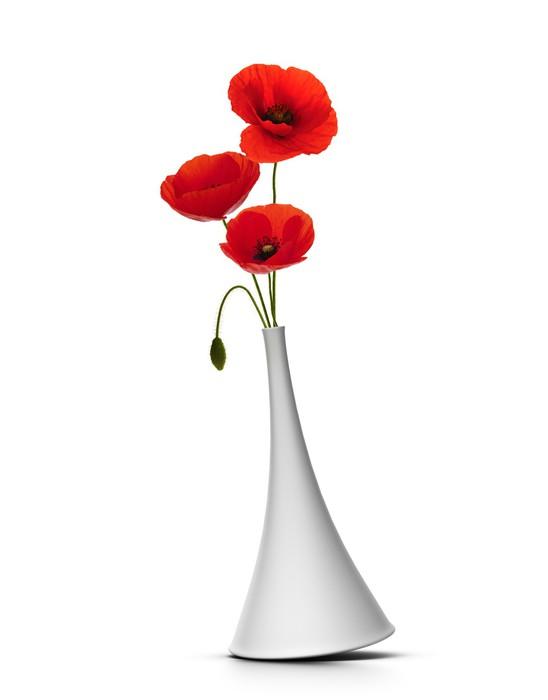 Quadro su tela vaso con tre papaveri rossi su sfondo for Quadri con papaveri rossi