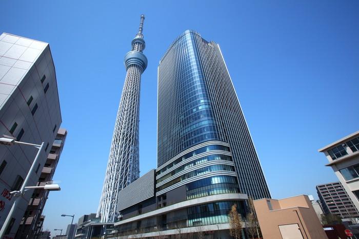 Vinylová Tapeta Tokio oblohy stromu, Japonsko - Asie