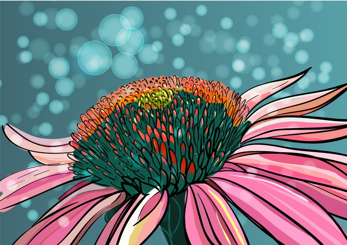 Vinylová Tapeta Vector Flower - Pozadí