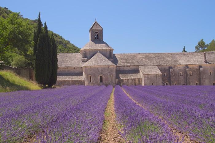 Vinylová Tapeta Senanque Abbey (Provence, Francie) - Evropa