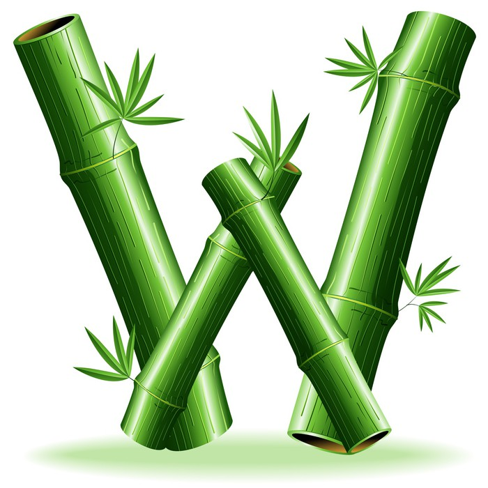 Bambù Lettera W-Bamboo Logo Sign Letter W-Vector Wall ...