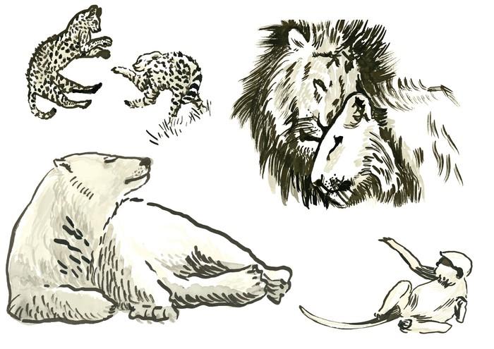 Fototapeta Winylowa Zwierzęta - ręcznie malowane ilustracje konwertowane do wektora - Ssaki