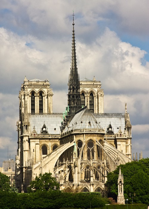 Notre Dame Cathedral Wall Mural   Vinyl