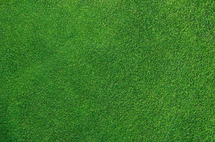Vinylová Tapeta Perfect Golf Green - Struktury