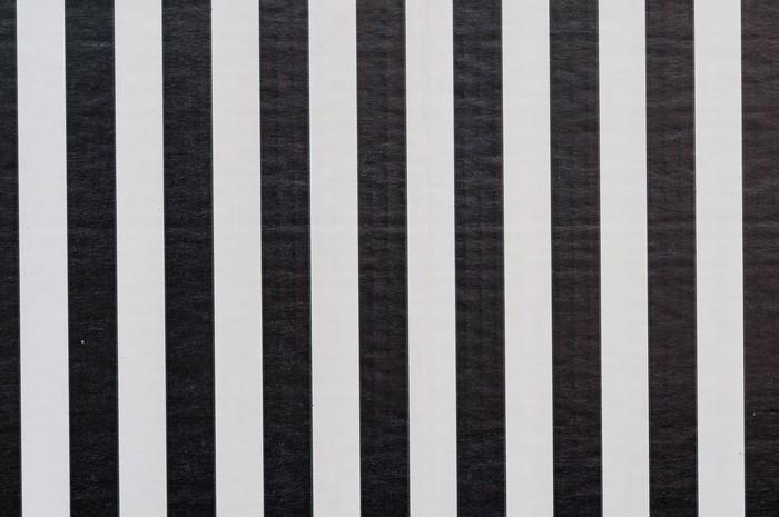 papier peint papier ray noir et blanc pixers nous vivons pour changer. Black Bedroom Furniture Sets. Home Design Ideas