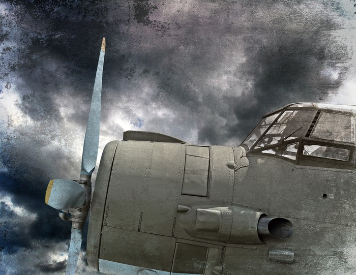 Retro aviation old airplane Wall Mural Pixers We live to change