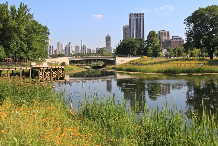 Vinylová Tapeta Lincoln Park Zoo ukazuje vody, květiny a Chicago skyline - Amerika