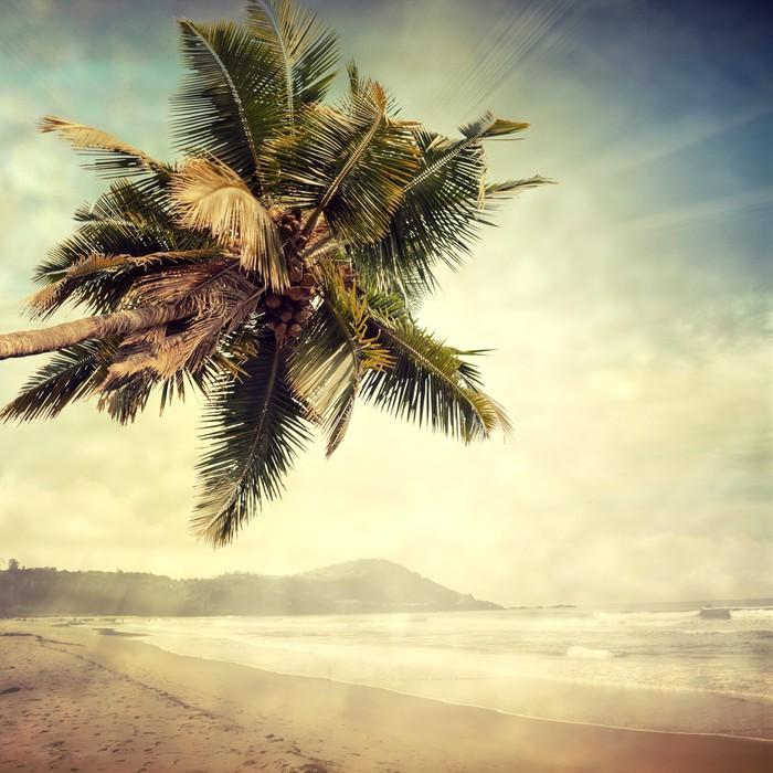 Kwadryptyk Grunge palm-8 - Tematy