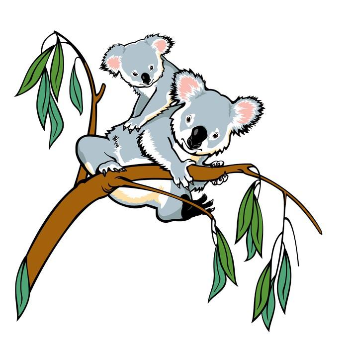 Sticker koala avec joey escalade eucalyptus branche - Branche d eucalyptus ...
