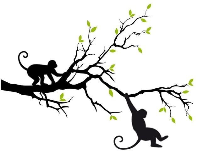 Vinylová Tapeta Opice na stromě, vektoru - Nálepka na stěny
