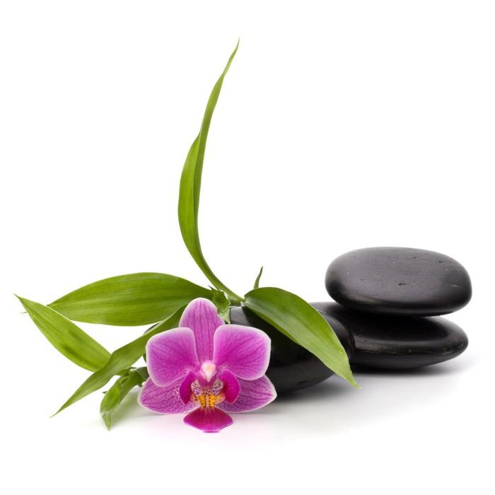 sticker zen quilibre de cailloux spa et le concept de soins de sant pixers nous vivons. Black Bedroom Furniture Sets. Home Design Ideas