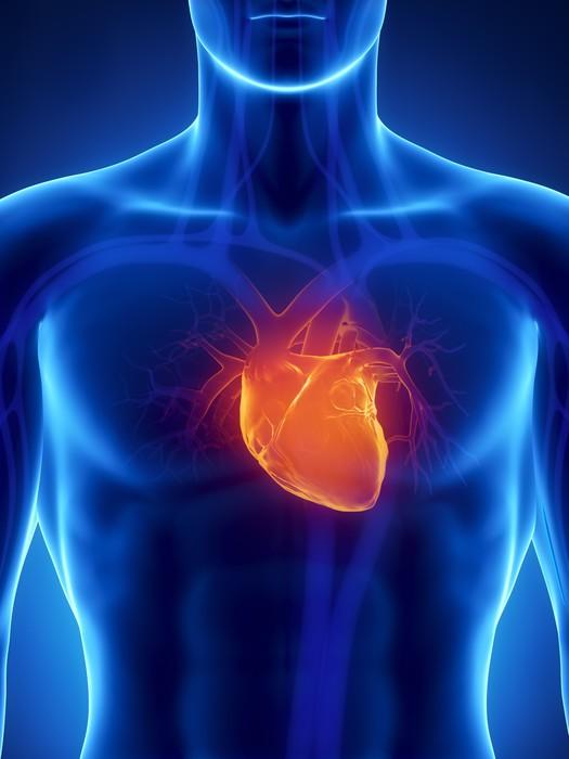 Vinilo Pixerstick Centrado en el corazón humano • Pixers® - Vivimos ...