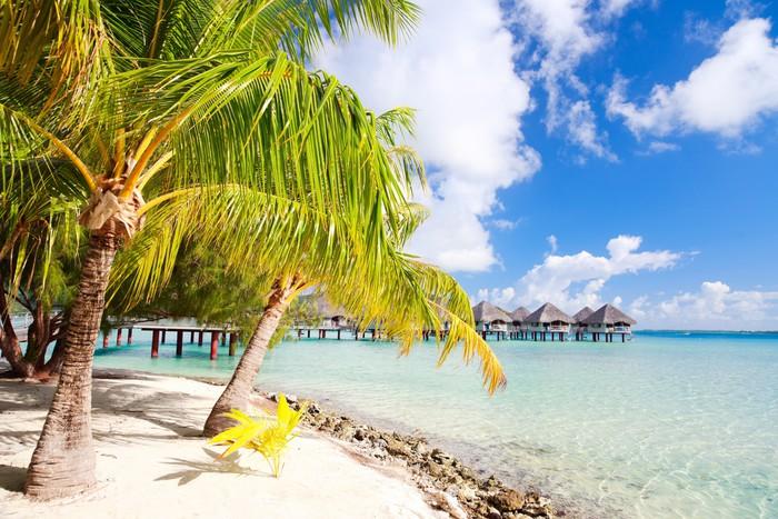 Vinylová Tapeta Perfektní pláž na Bora Bora - Prázdniny
