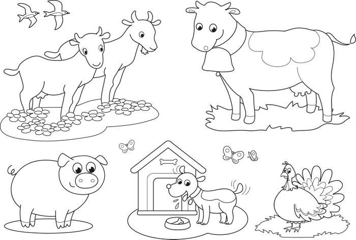 Poster Färben Nutztieren für Kinder Ziege Kuh Schwein Türkei ...