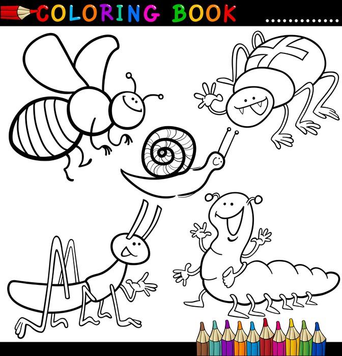 Fotomural Insectos y bichos de libro para colorear o página • Pixers ...