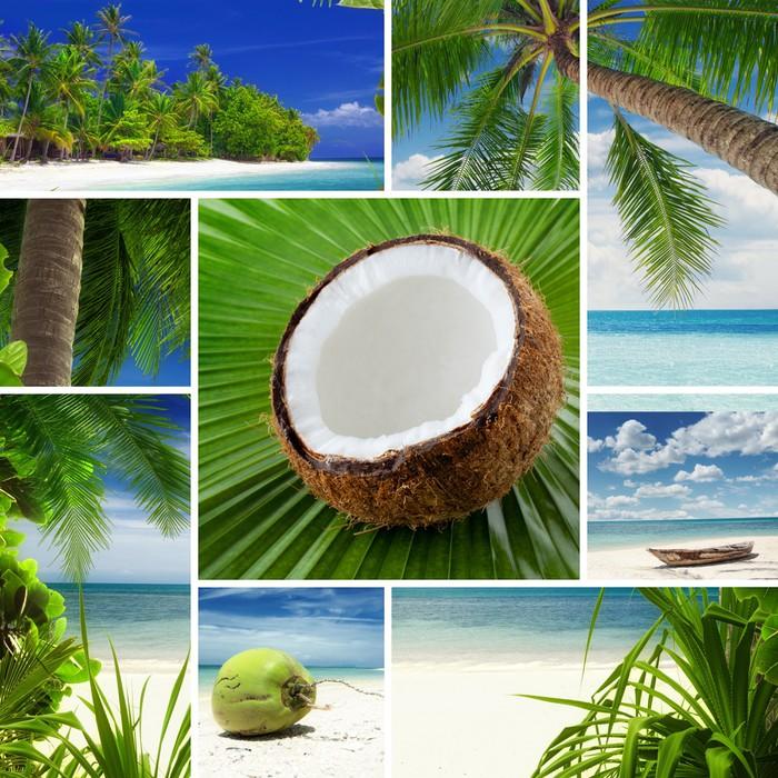 fototapete tropic thema collage aus verschiedenen bildern zusammengesetzt pixers wir leben. Black Bedroom Furniture Sets. Home Design Ideas