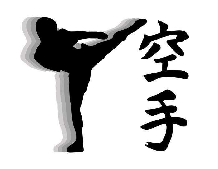 Vinylová Tapeta Karate bojovník - branku vektor - Extrémní sporty