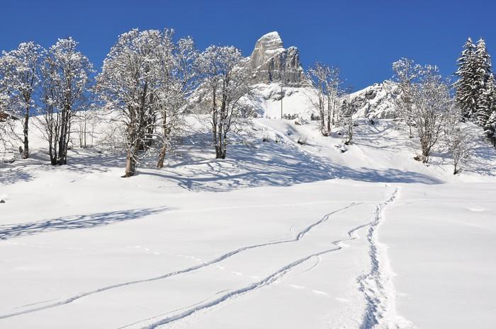 Papier Peint à Motifs Vinyle Braunwald, célèbre station de ski suisse - Montagne