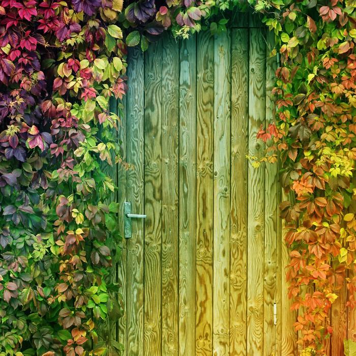 Vinyl Fotobehang Kleurrijke ingangsdeur - Wonderen der Natuur