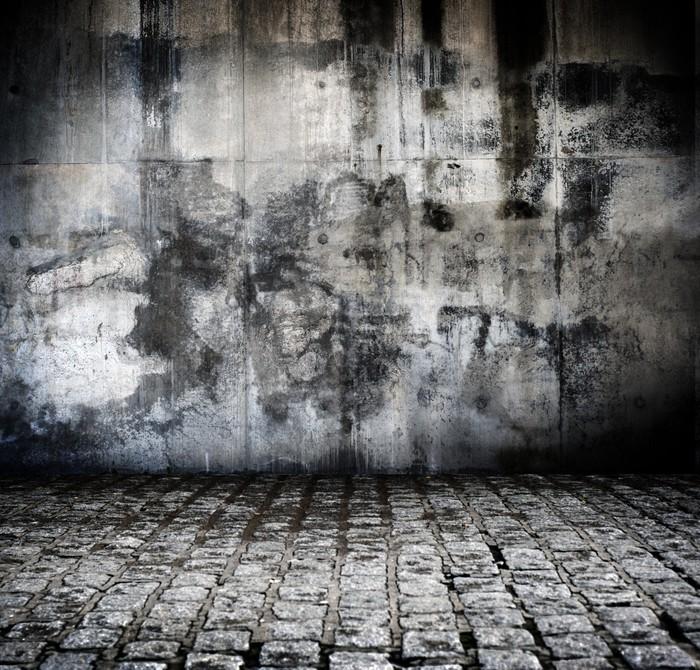 Vinylová Tapeta Fond rue en pavé et mur Abime - Pozadí