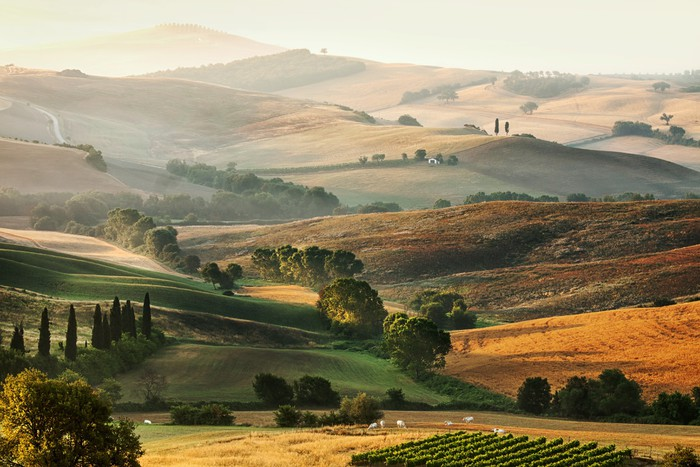 Italian countryside in Tuscany Wall Mural Pixers We live to change