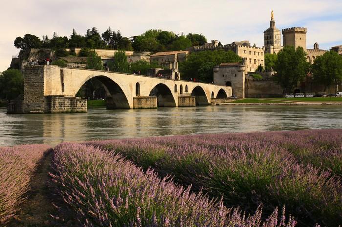 Papier Peint Le Pont D Avignon Pixers Nous Vivons Pour Changer